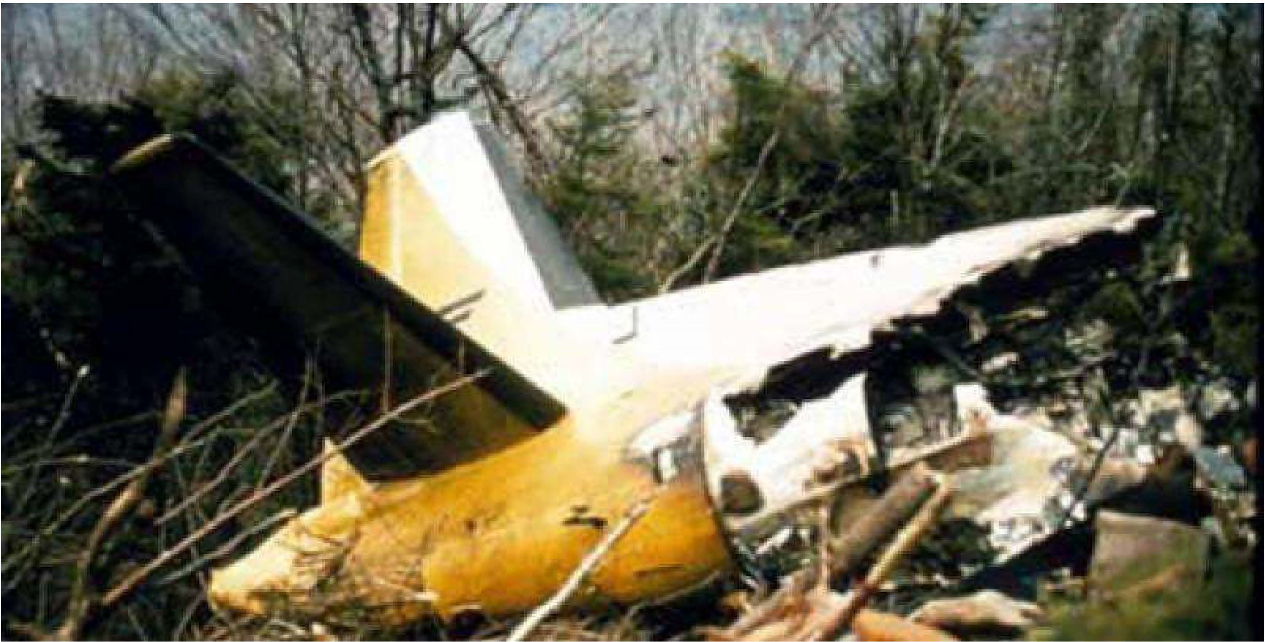 photo of surviving tail portion of the fuselage still on the mountain following the crash
